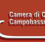 cciaa cb logo1