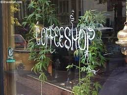 marjuana coffe shops