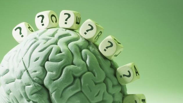 test cervello
