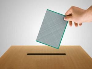 elezioni primarie